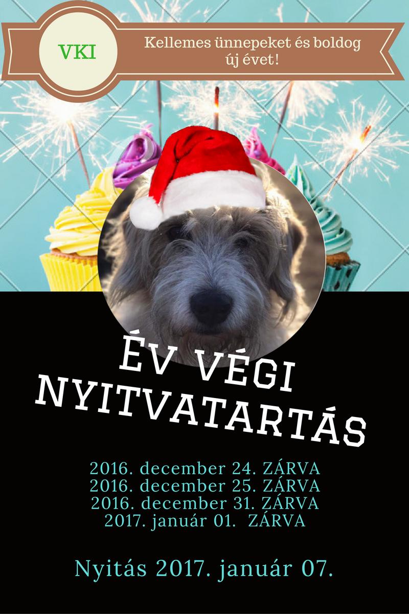 vki-2016-buek